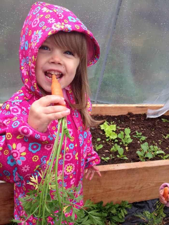 Your Kids Will Love Veggies! Growing Food Together + Top Healthy Raw Veggies to Snack on from the Garden