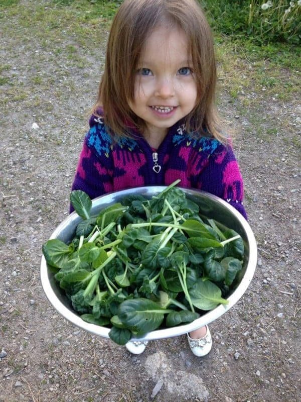 How to get kids to love their vegetables!