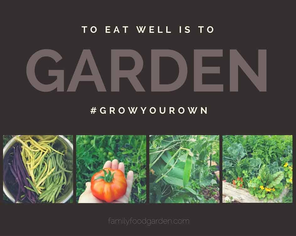 Awesome Gardening Blog! So informative