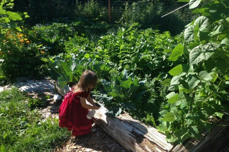 Kids Gardening 101: Activities for Them to do While you Garden