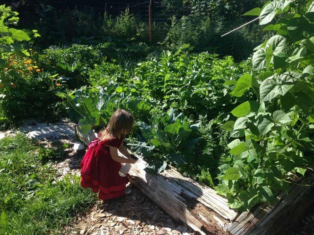 Kids gardening 101 activities for them to do while you garden for Children s books about gardening