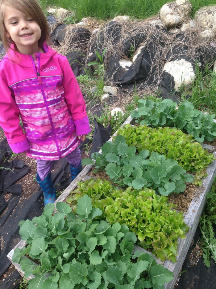 Creating a magical children 39 s garden for Creating a vegetable garden