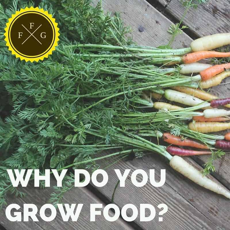 Find out why you need to grow food this year!