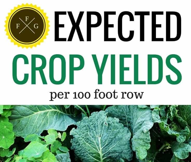Expected Crop Yield per 100-foot row
