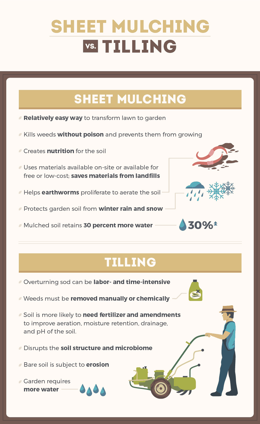 The pros and cons of sheet mulching versus tilling