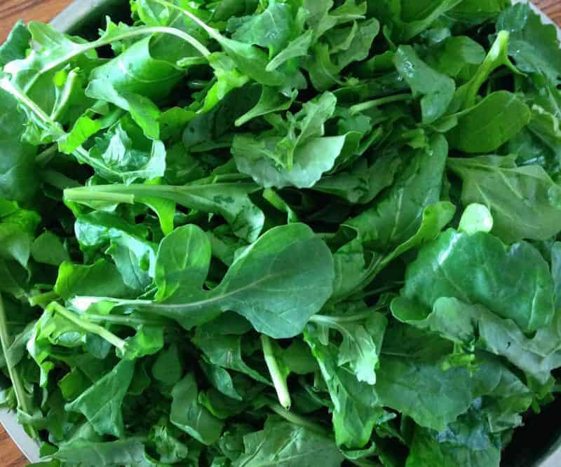 Arugula- overwinter for an early spring harvest