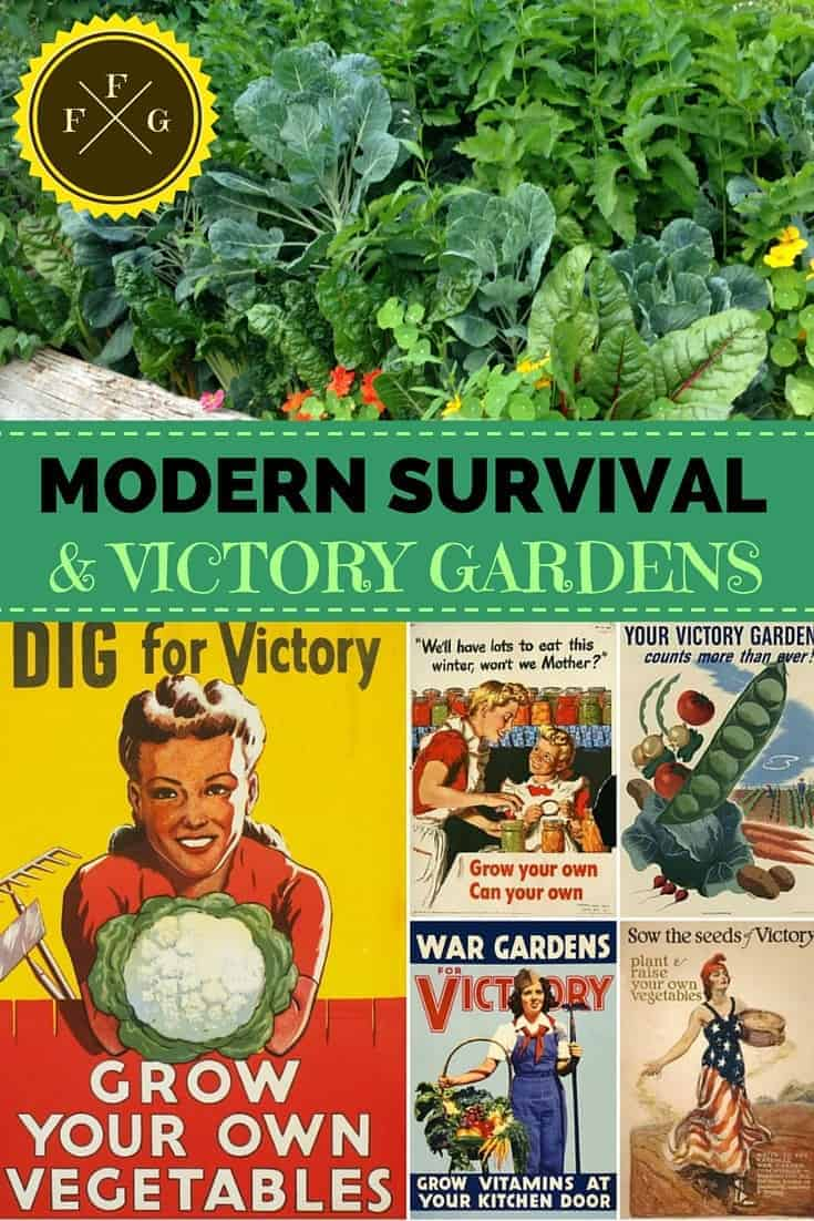 Growing a modern day 'victory garden' for troubled times