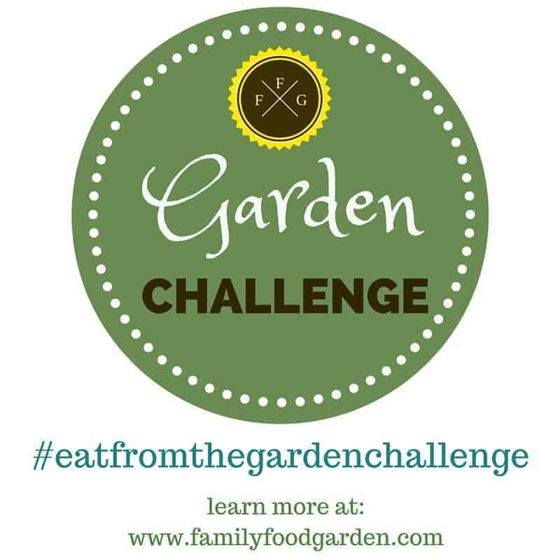 Garden Challenge to help YOU learn how to eat in season!