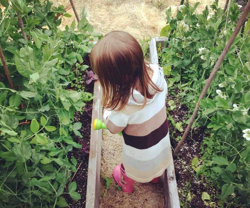 Best Crops for Kids to Grow