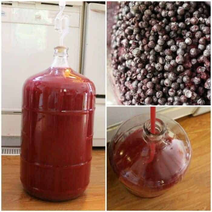 Elderberry Wine Recipe