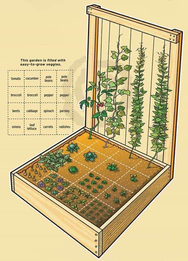 Inspiring vegetable garden bed designs plans for Planning my garden layout