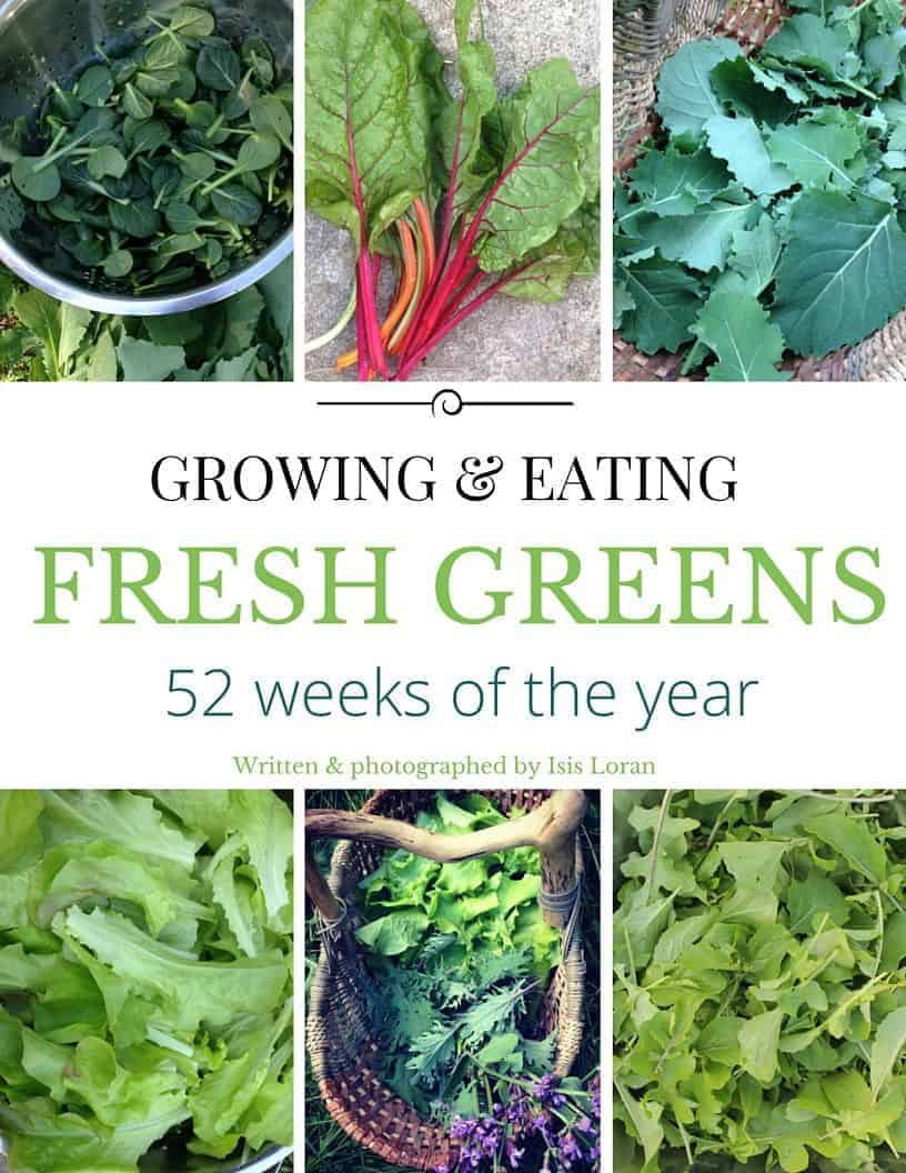 how to grow greens year-round