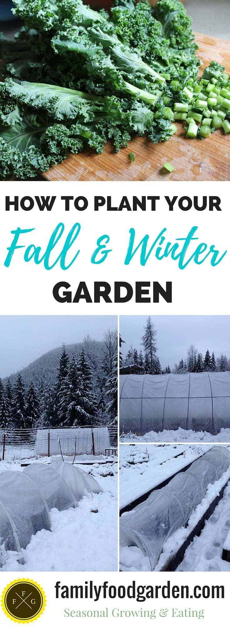 How to plan & plant your fall & winter garden