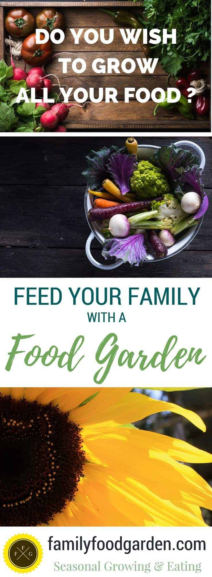 Inspiration for growing food on a large scale for your family