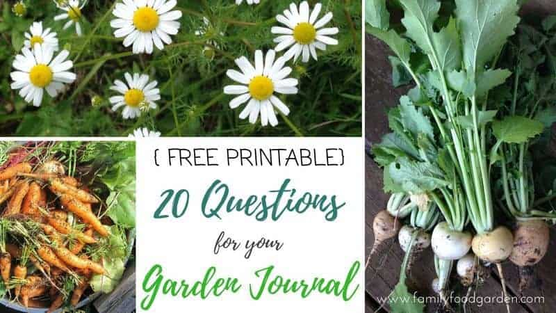 20 Questions for your Garden Journal