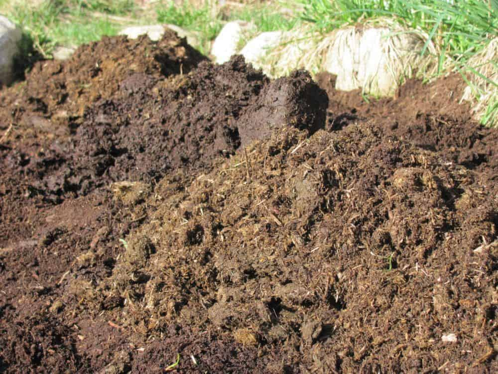 The Lazy Composter's Guide to Making Awesome Compost