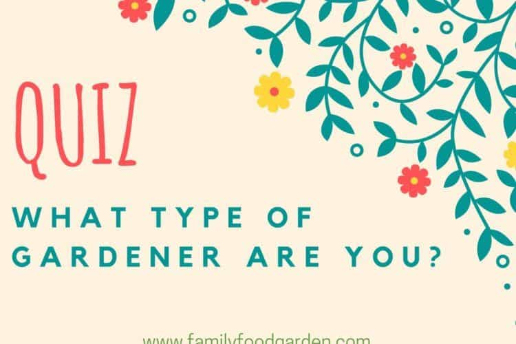 *QUIZ* What Type of a Gardener are You?