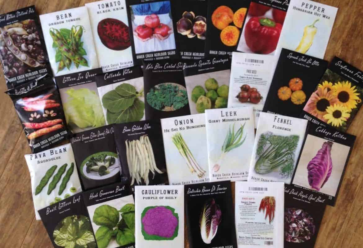 Choosing Your Seeds {+ FREE SEED INVENTORY PRINTABLE}