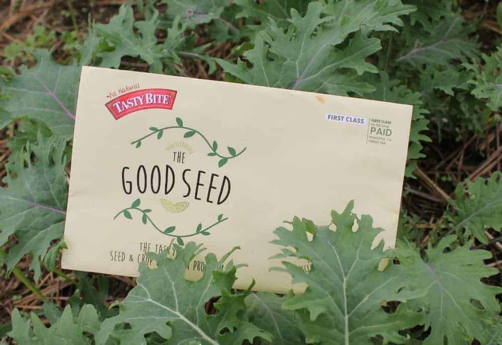 the Good Seed Contest: Grow & Donate your Harvests