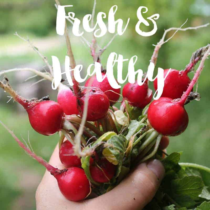 grow fresh healthy food for your family