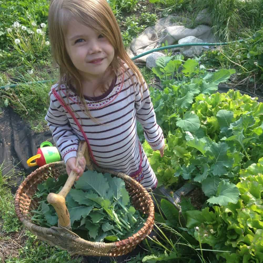 The Best Way for Kids to Love Fresh Veggies + List of Best Snacking in the Garden Raw Veggies for Kids