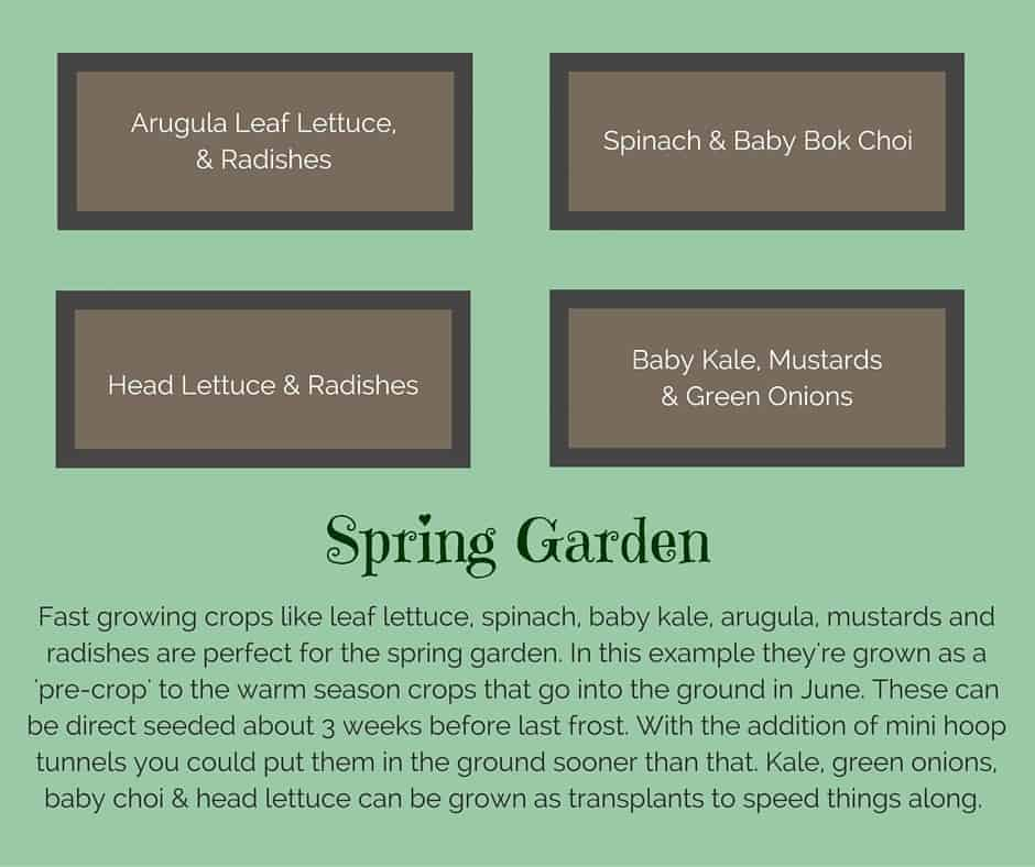 Plant list for a spring raised vegetable garden