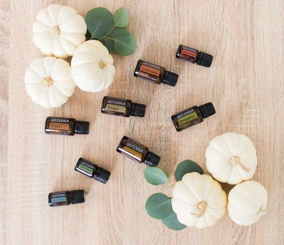 Essential Oil Diffuser Blends for a Cozy Fall Home