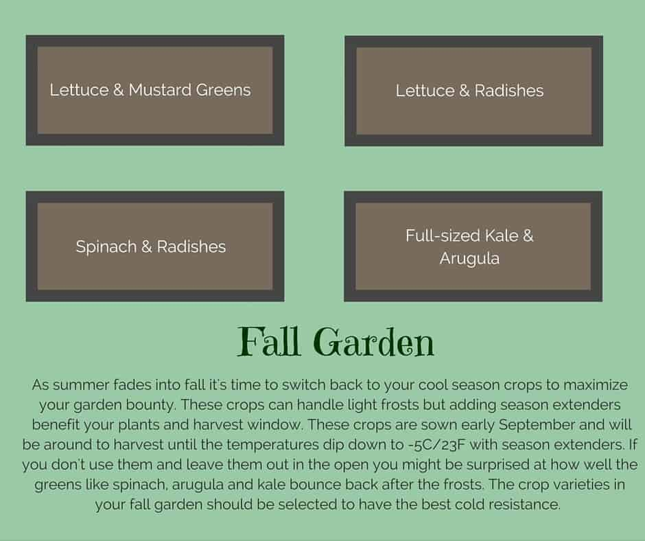 Plant list for a fall raised vegetable garden