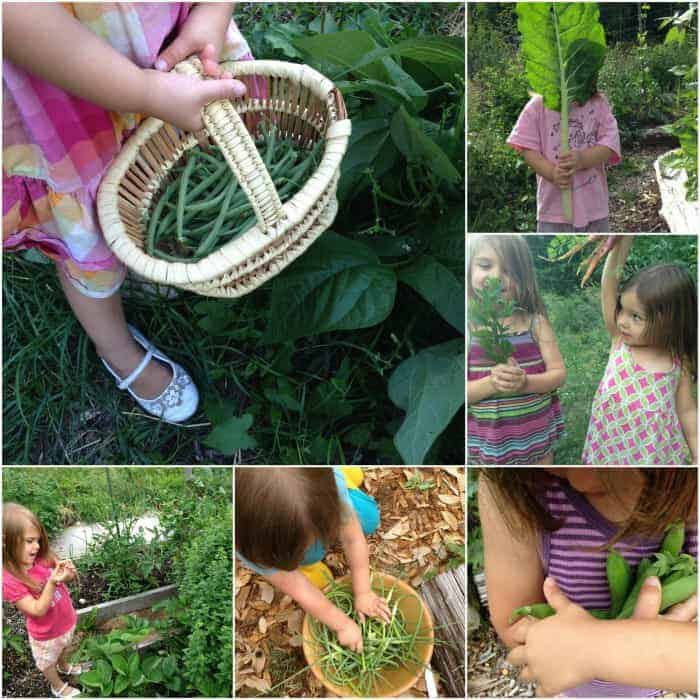 Kids Gardening 101- Tips for Gardening with Kids & Babies