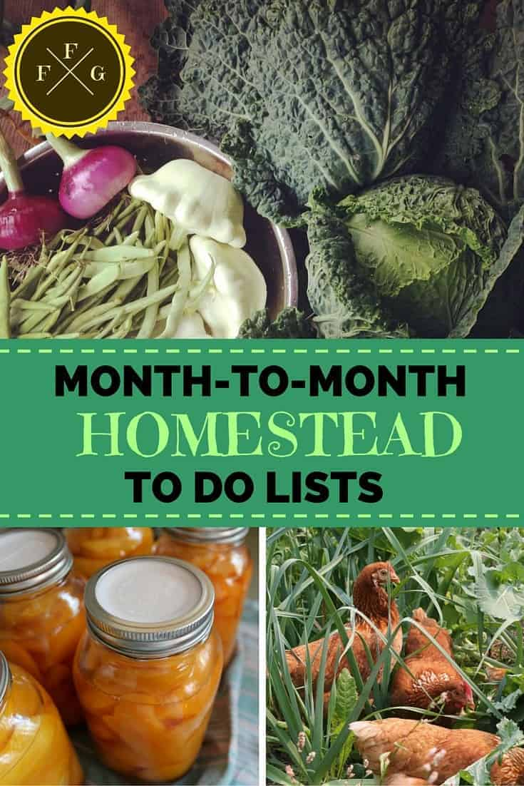 Organize your homestead with monthly to do lists #homestead #homesteading #selfsufficiency