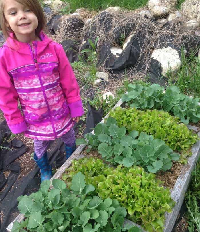 kids veggie patch