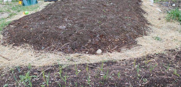 Permaculture sheet mulching/lasagna gardening