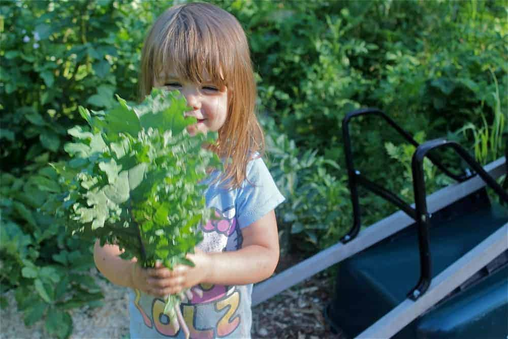 Fun + Colorful Plants for Kids Garden