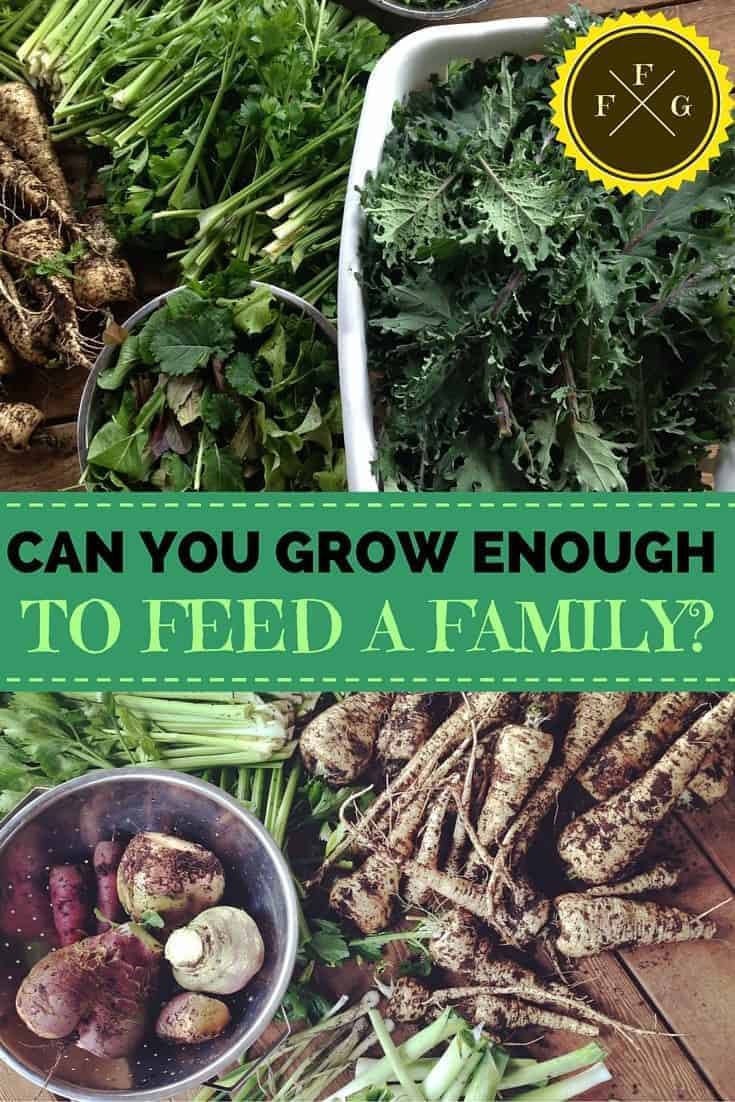 Is it possible to grow ALL of your family's produce?