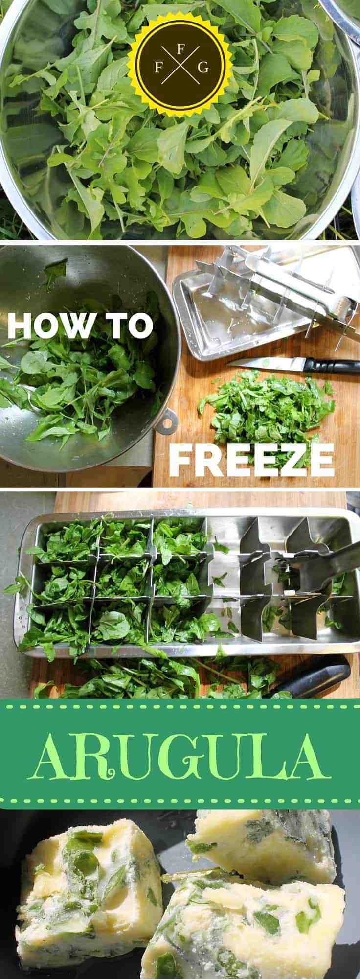 How to preserve arugula by freezing into olive oil cubes