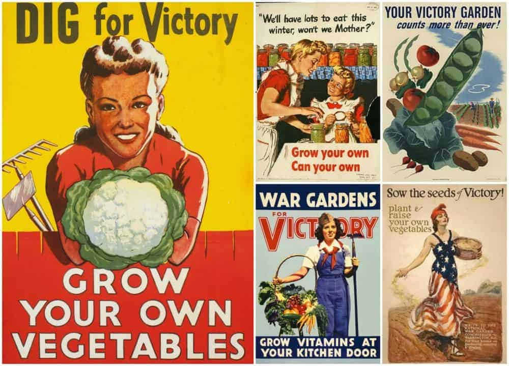 Growing a Modern Day Victory Garden for Troubled Times