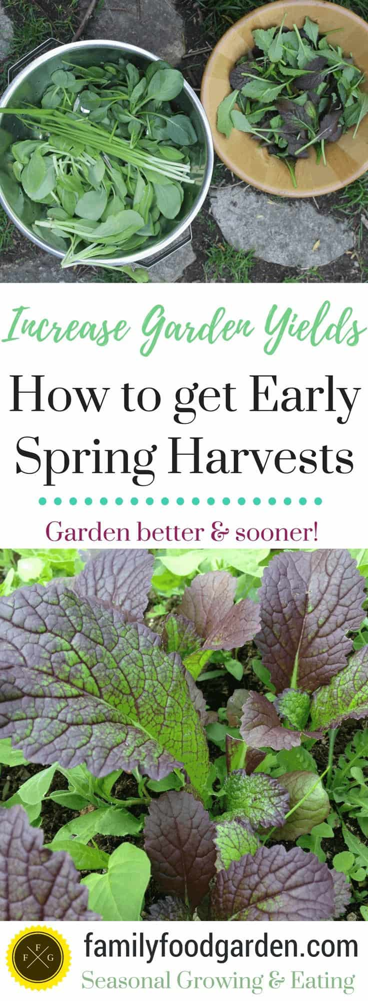 Spring Gardening to get Early Spring Harvests