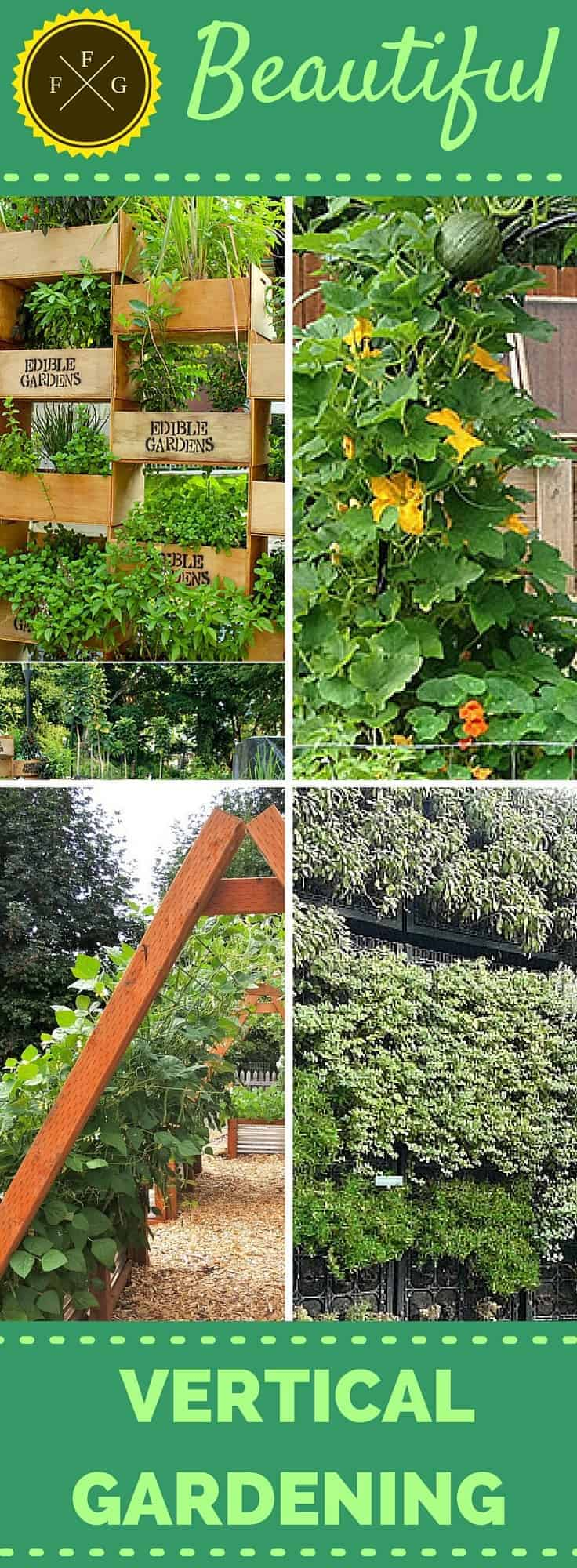Beautiful edible vertical garden designs family food garden for Vertical garden design