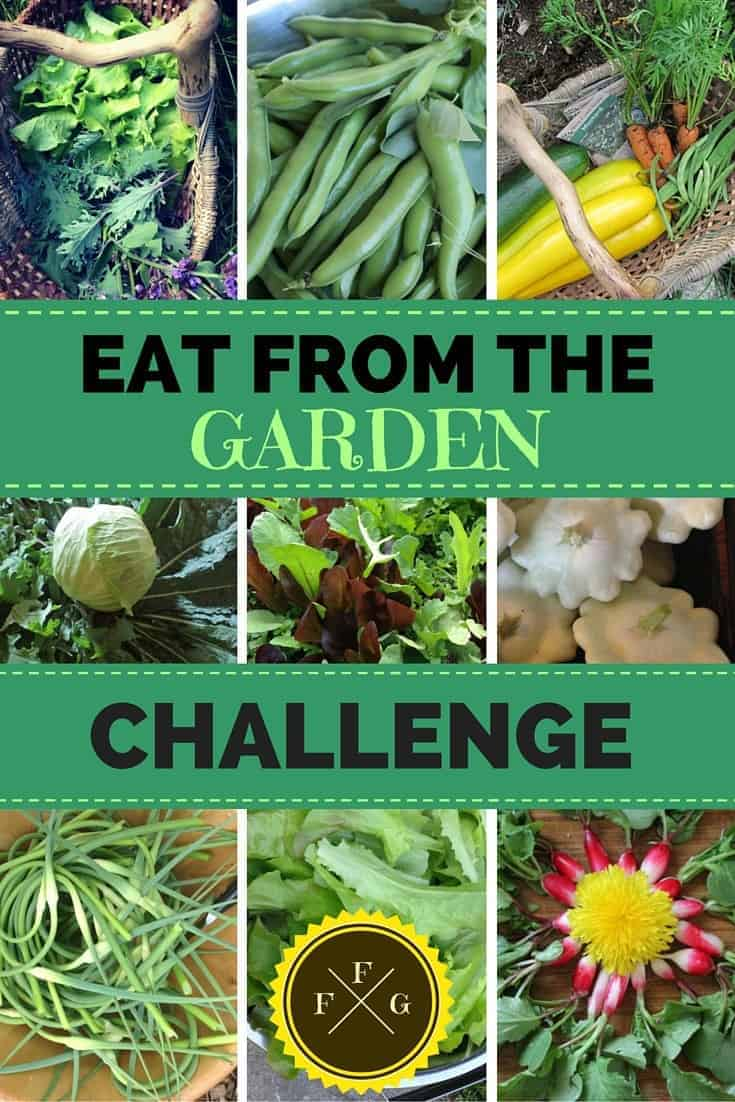 Challenge yourself to only eat from your garden for 1 month or more! Don't have a garden? Support local farmers instead