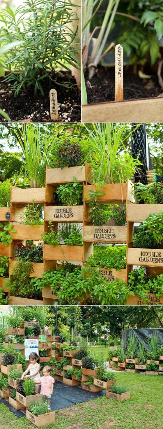 Beautiful vertical edible gardening