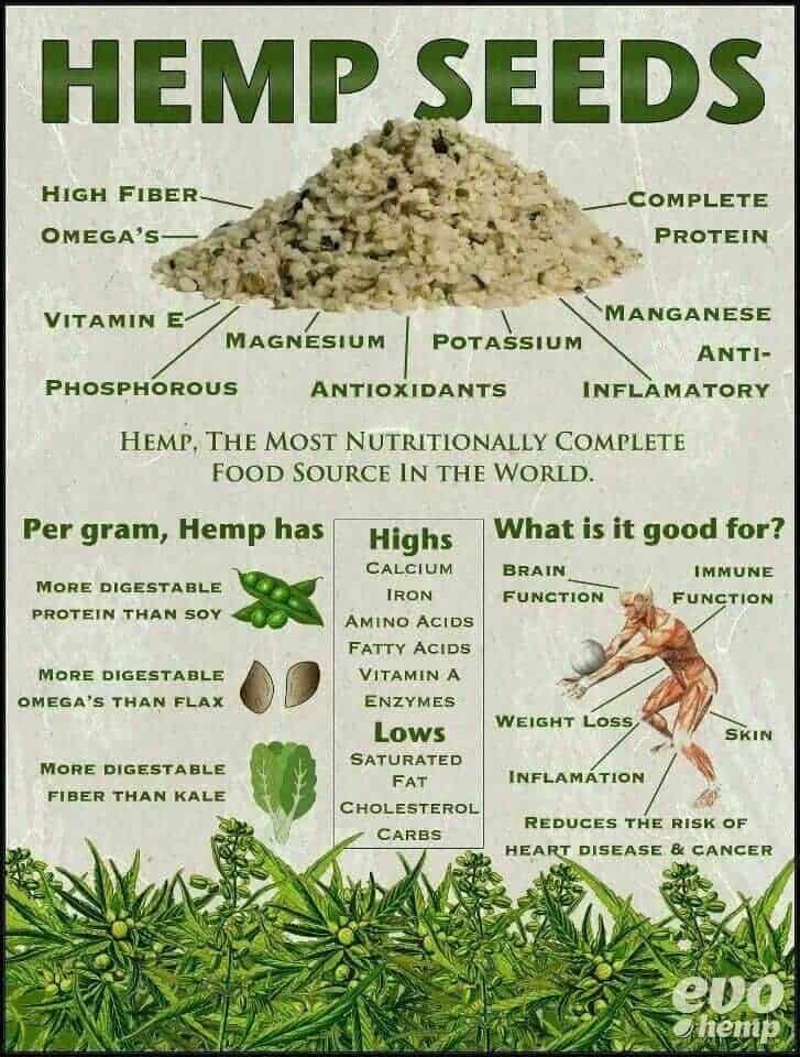 Hemp Heart Nutritional infographic