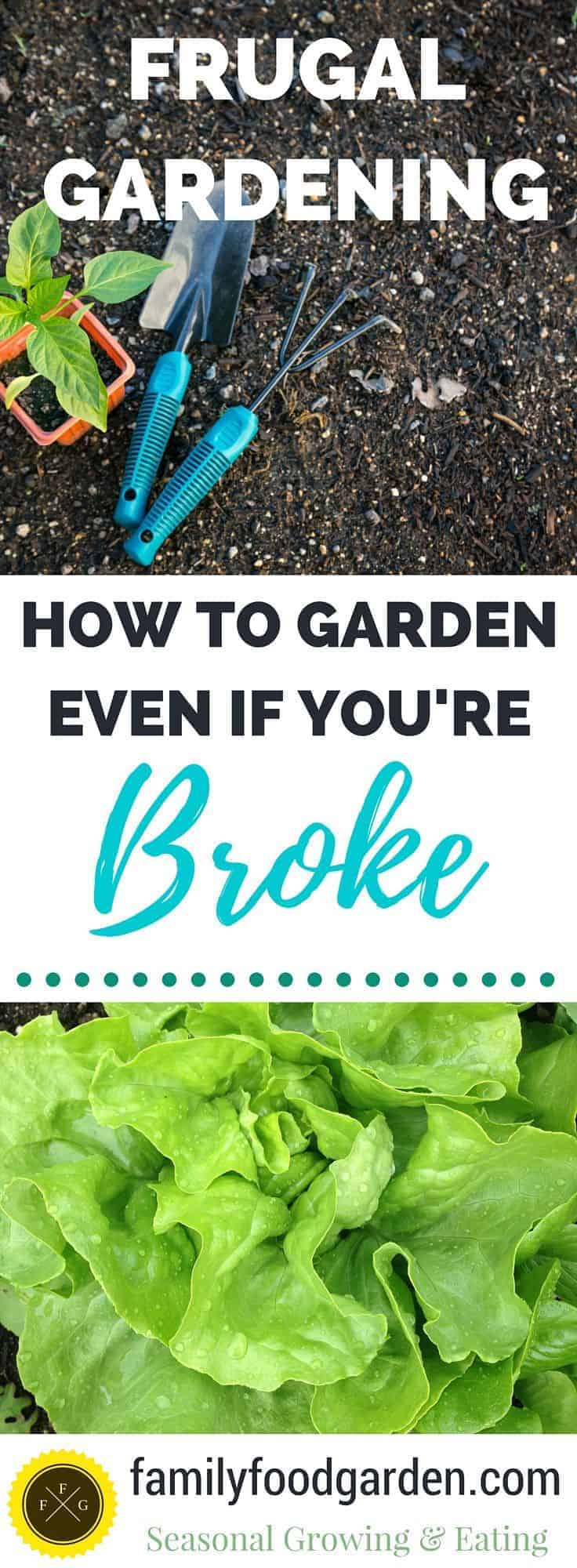 How to Garden even if you're broke