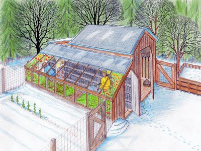 Greenhouse & garden shed design