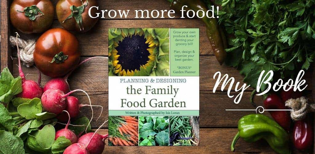 How to grow lots of food for your family