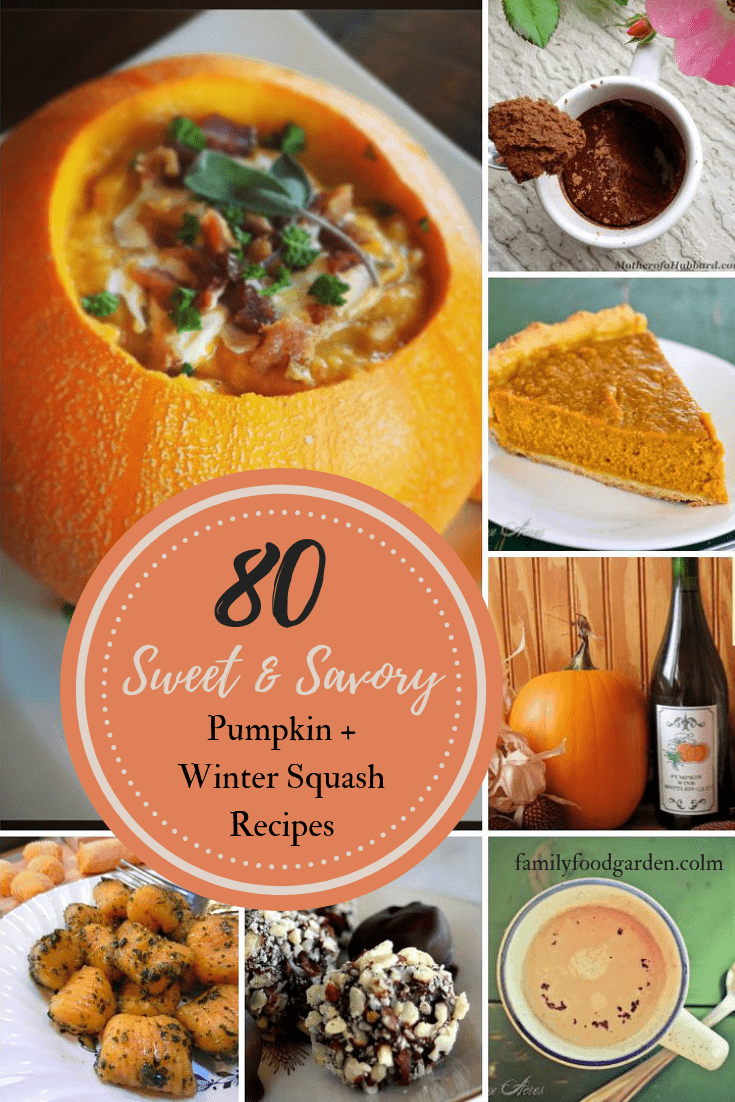 Pumpkin Winter Squash Recipes Sweet Amp Savory Family