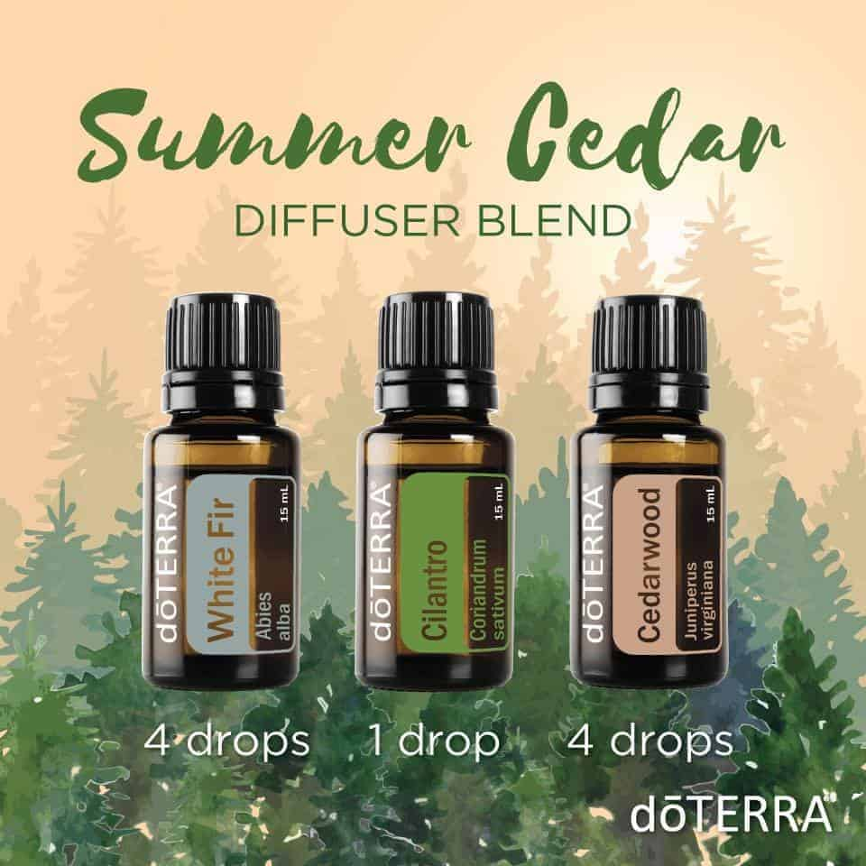 Essential Oil Diffuser Blends Family Food Garden
