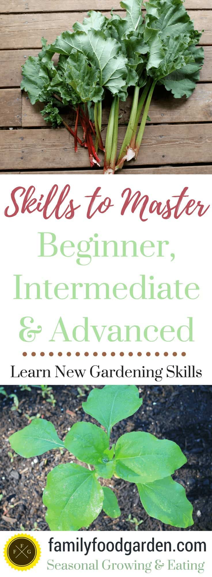 Become a better gardener by expanding your skills