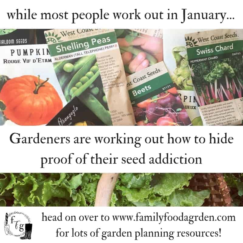 Are you addicted to seeds? #seedaddict #seeds #seedstarting #gardening #vegetablegarden