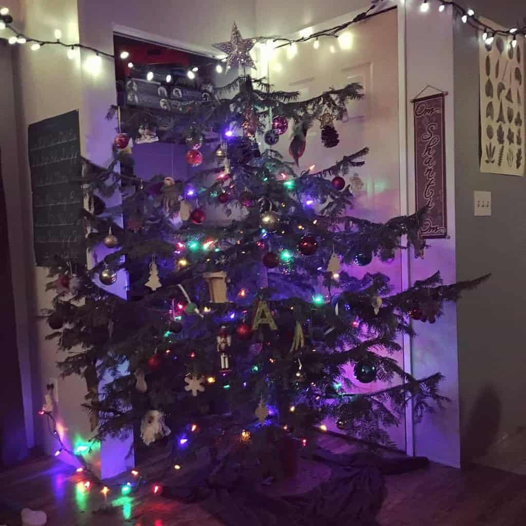 The Tradition Of Christmas Trees: The Tradition Of A Real Christmas Tree