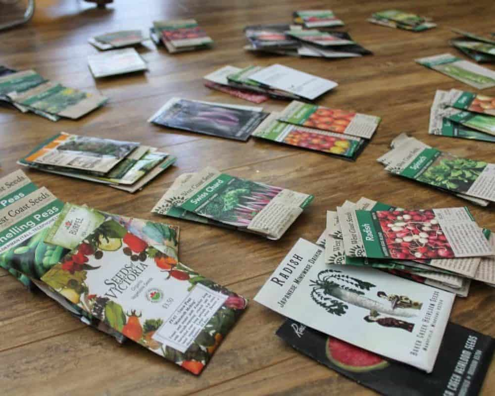 Where to Buy Seeds: Organic Seeds, Herb Seeds & Heirloom